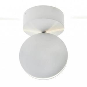 Уличный светодиодный светильник Kink Light Ореон 08574,01(4000К)